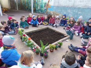 plantations fleurs dans la cour (1)