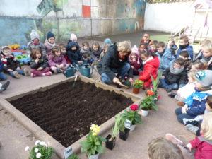 plantations fleurs dans la cour (3)